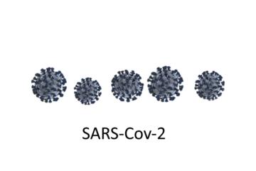 sars-cov-2